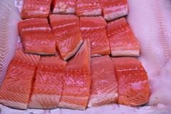 wild salmon filets - stock photo
