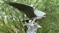 Statue of hunting eagle (1 of 2) Stock Footage