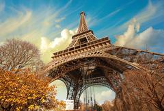 wonderful street view of eiffel tower and winter vegetation - paris - stock photo