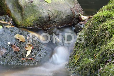 Stock photo of stream natuere scene.JPG