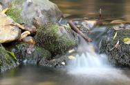 Fresh water spring.JPG Stock Photos