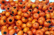 Stock Photo of orange berries