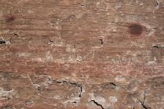 sandstone surface - stock photo