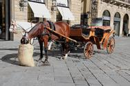 Stock Photo of horse coach at piazza della signoria, florence, italy.