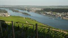 Vineyards near Ruedesheim am Rhein, Upper Middle Rhine Valley, Germany Stock Footage