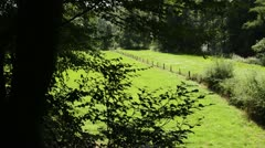 Meadow valley, Neandertal Nature Reserve, Germany Stock Footage
