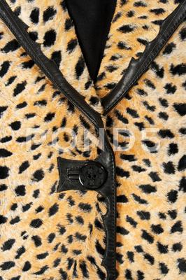 Stock photo of Close-up of a stylish leopard jacket