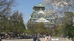 People visit Osaka Castle, cherry tree blossom, Japan Stock Footage