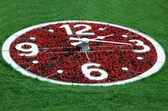 Flower clock against lawn background Stock Photos
