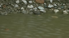 Ripples on the edge of a ponds with stones and gravel Stock Footage