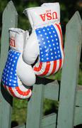 Boxing gloves on the fence Stock Photos