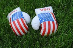 Boxing gloves with us flag image on the lawn Stock Photos
