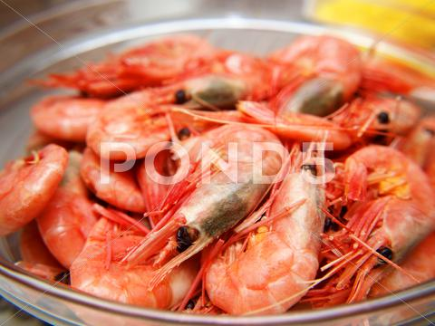 Stock photo of whole fresh raw prawns