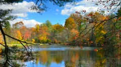 Serene lake timelapse during fall colors Stock Footage
