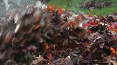 Raking Leaves in the Fall Stock Footage