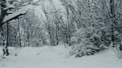 Winter from the car - stock footage