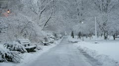Winter Path Stock Footage