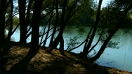 Views of the river through the trees Stock Footage
