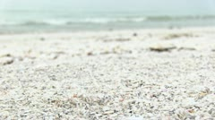 Ocean Waves on Shell Filled Beach Stock Footage