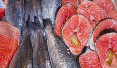 Stock Photo of sea food