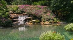 Garden Waterfall with Flowers Flowing into Clear Water Pond - stock footage
