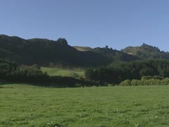 Rural landscape, New Zealand, North island + pan Stock Footage
