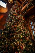 Decorated christmas tree indoor Stock Photos