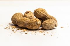 Peanuts isolated on white Stock Photos