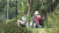Bench in Public Gardens Stock Footage