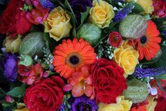 mixed flower arrangement - stock photo