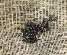 Coffee beans in jute fabrics back Stock Photos
