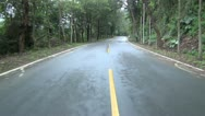 Driving on the road in the forest Stock Footage