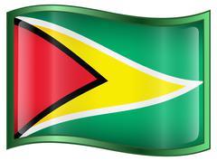 Guyana flag icon. Stock Illustration