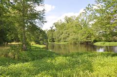 Spring County Pond - stock photo
