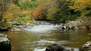 Autumn leaves fall into rocky river Stock Footage