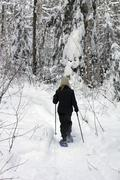 Forest snowshoeing Stock Photos