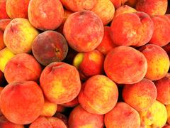 Stock Photo of many bright ripe and tasty peaches