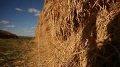 Stock Video Footage of Agriculture 02