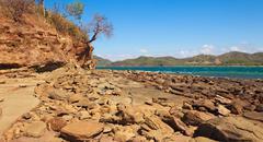 rocky guanacaste coast - stock photo
