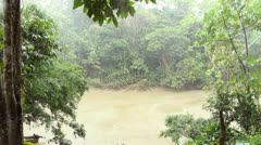 Tropical rainstorm over a rainforest creek in the Ecuadorian Amazon Stock Footage