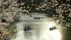 People celebrating the cherry blossom at Kudanishita in Tokyo. Stock Footage