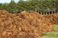 Stock Photo of manure