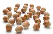 Stock Photo of hazelnuts