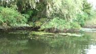 Along riverside audio Stock Footage