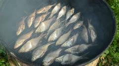 Closeup ecologic fish smoking in smokehouse and smoke rise Stock Footage