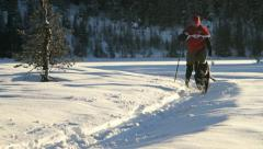 Woman and dog cross country skiing Stock Footage