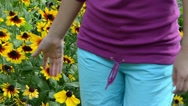 Stock Video Footage of girl touch rudbeckia