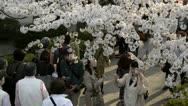 People celebrating the cherry blossom at Kudanishita in Tokyo. Stock Footage