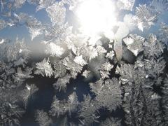 Stock Photo of frost and sun