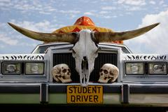 Student driver car long horns - stock photo